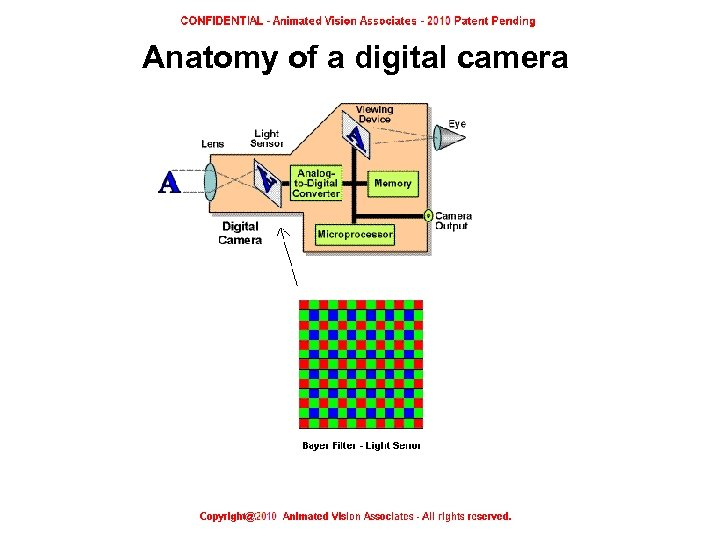 Anatomy of a digital camera