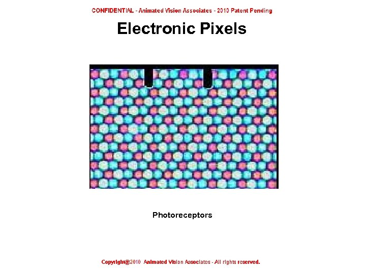 Electronic Pixels Photoreceptors Electronic Pixels