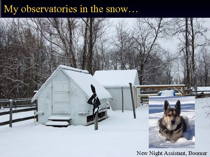 My observatories in the snow… New Night Assistant, Boomer