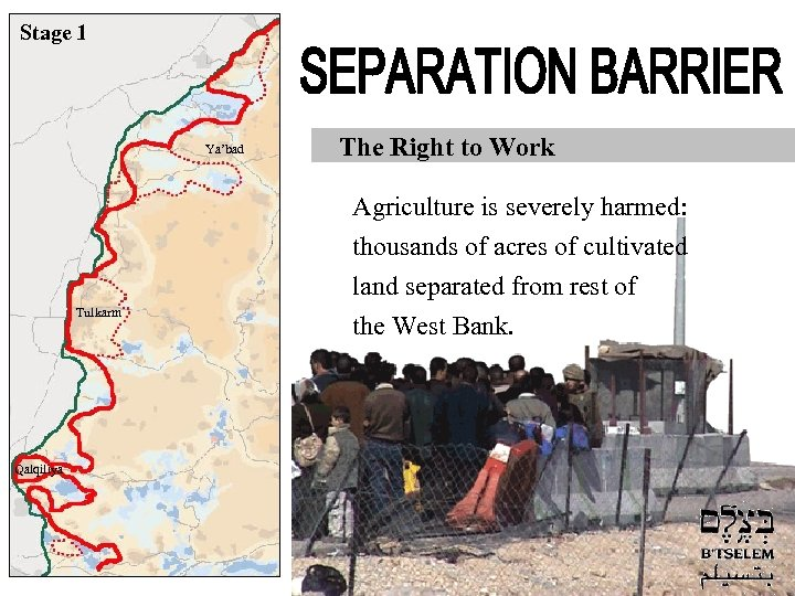 Stage 1 Ya'bad The Right to Work Agriculture is severely harmed: thousands of acres