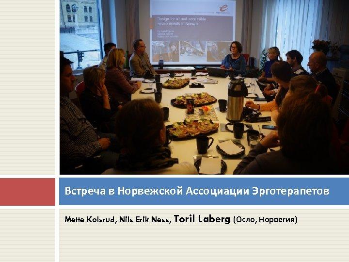 Встреча в Норвежской Ассоциации Эрготерапетов Mette Kolsrud, Nils Erik Ness, Toril Laberg (Осло, Норвегия)