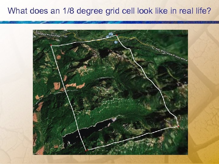 What does an 1/8 degree grid cell look like in real life?