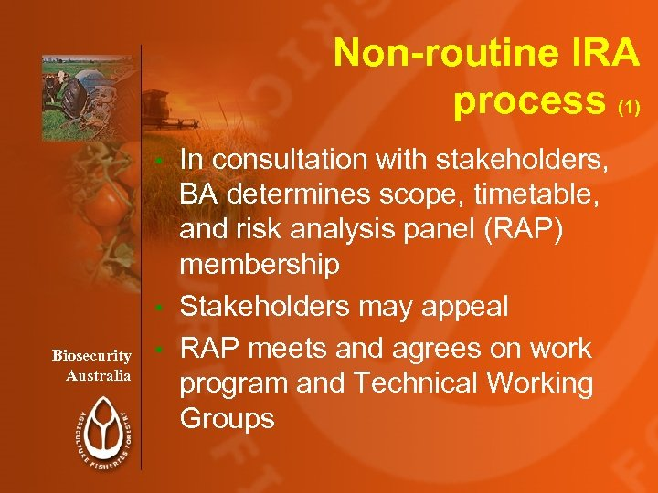 Non-routine IRA process (1) In consultation with stakeholders, BA determines scope, timetable, and risk