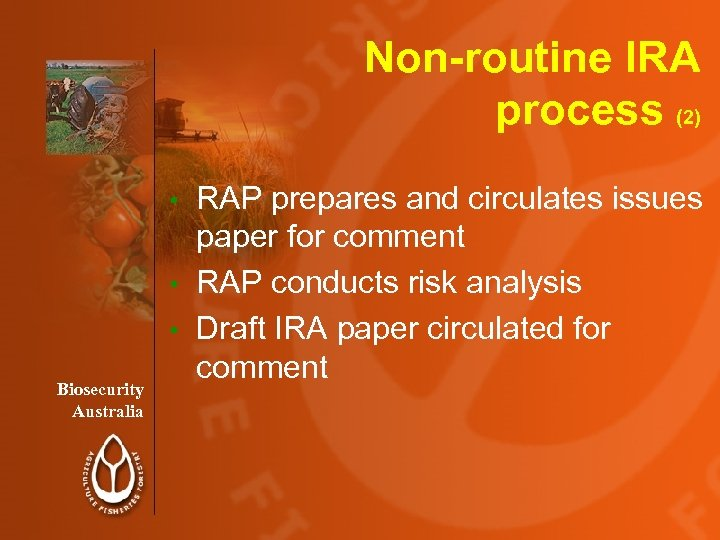 Non-routine IRA process (2) RAP prepares and circulates issues paper for comment • RAP