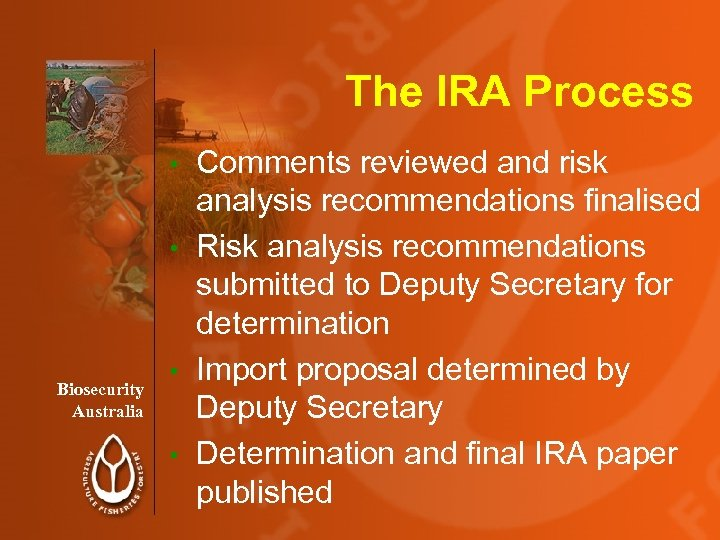 The IRA Process Comments reviewed and risk analysis recommendations finalised • Risk analysis recommendations