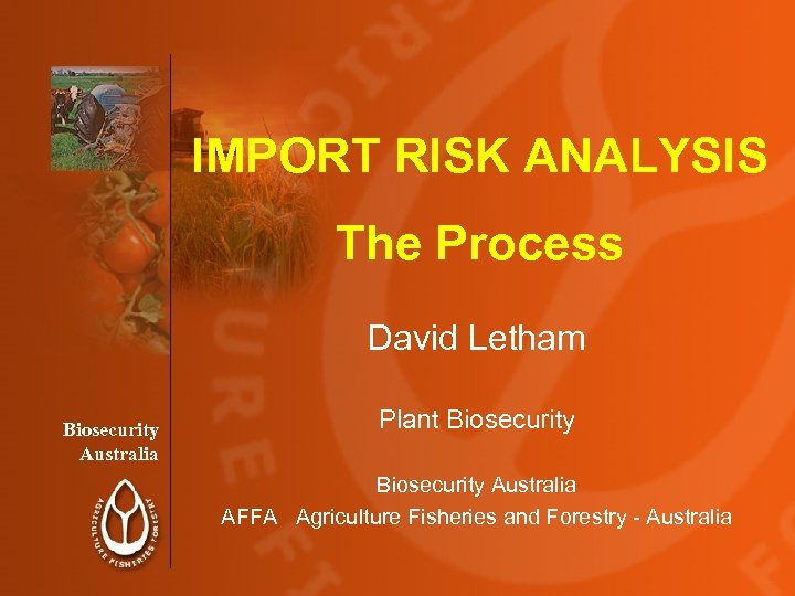 IMPORT RISK ANALYSIS The Process David Letham Biosecurity Australia Plant Biosecurity Australia AFFA Agriculture