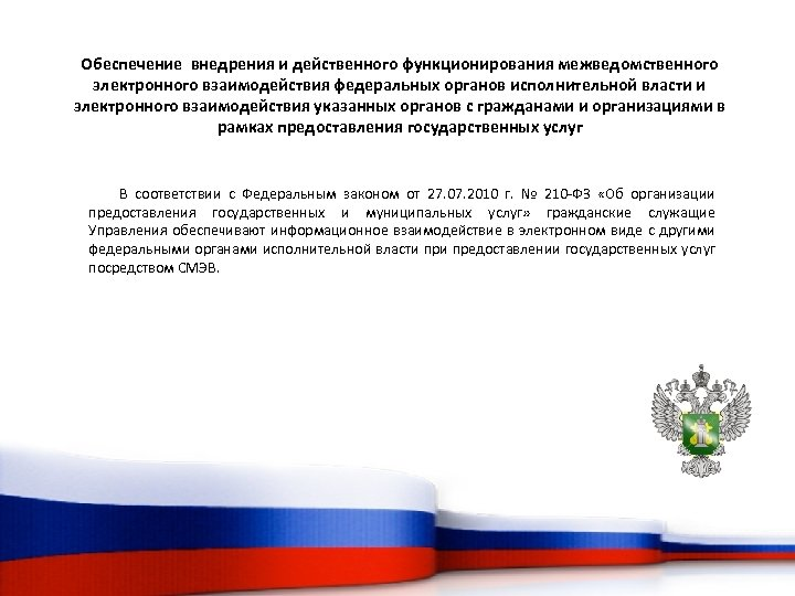 Обеспечение внедрения и действенного функционирования межведомственного электронного взаимодействия федеральных органов исполнительной власти и электронного
