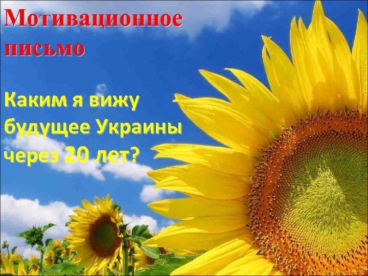 Мотивационное письмо Каким я вижу будущее Украины через 20 лет?