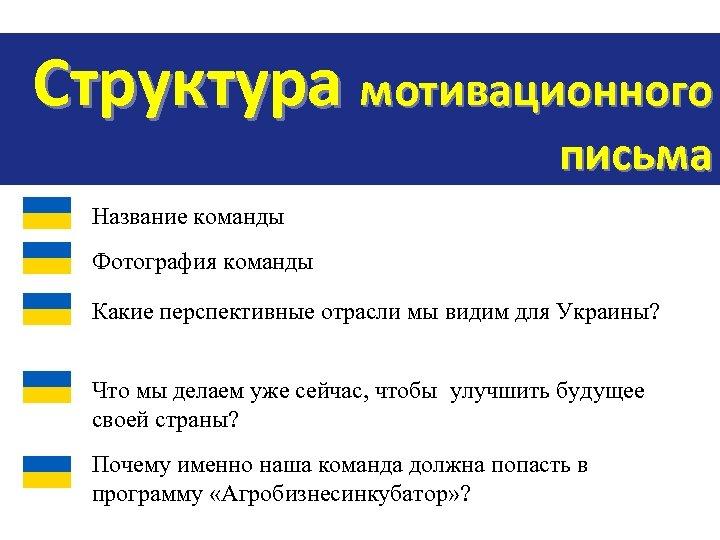 Структура мотивационного письма Название команды Фотография команды Какие перспективные отрасли мы видим для Украины?