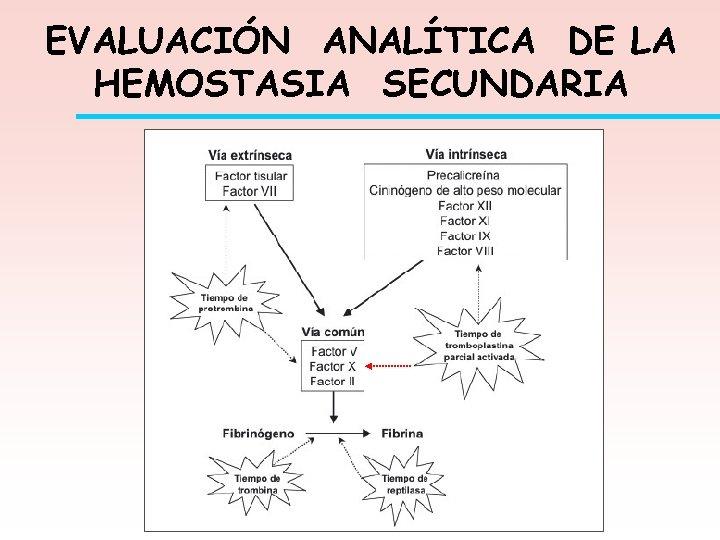 EVALUACIÓN ANALÍTICA DE LA HEMOSTASIA SECUNDARIA