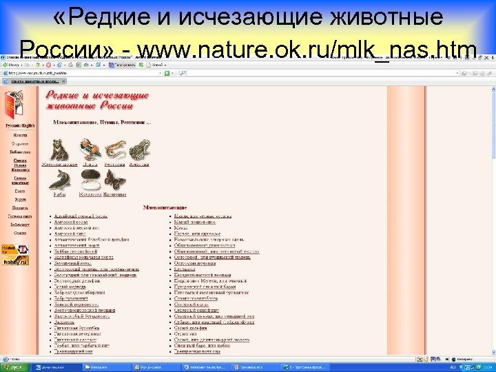 «Редкие и исчезающие животные России» - www. nature. ok. ru/mlk_nas. htm