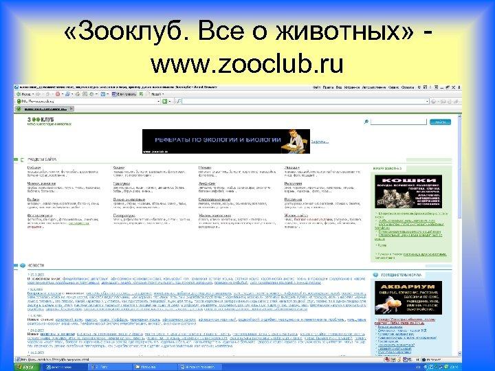 «Зооклуб. Все о животных» www. zooclub. ru