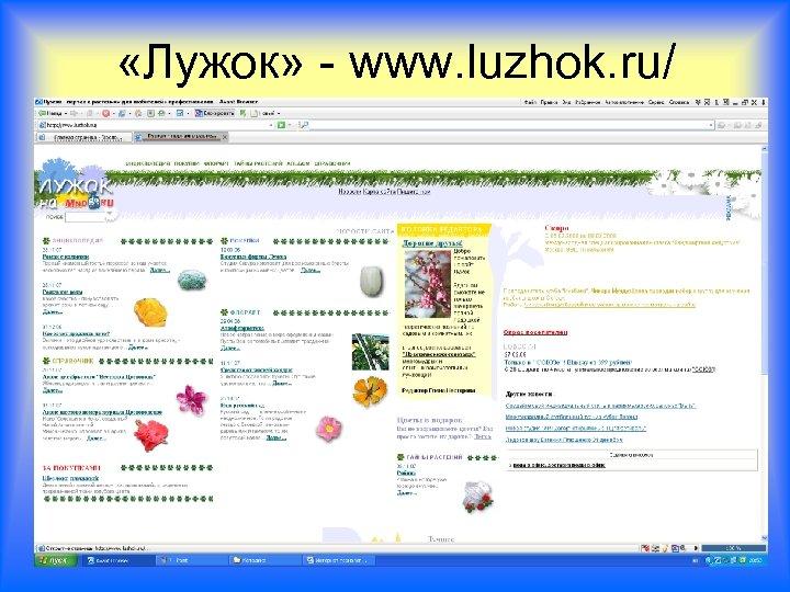 «Лужок» - www. luzhok. ru/