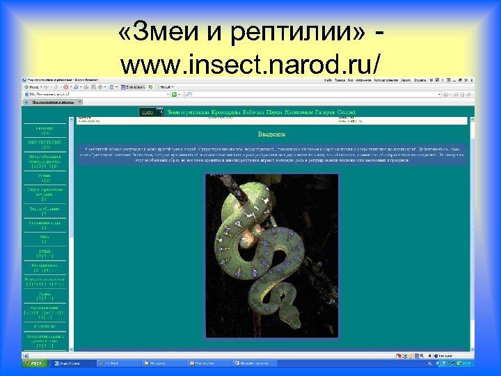 «Змеи и рептилии» www. insect. narod. ru/