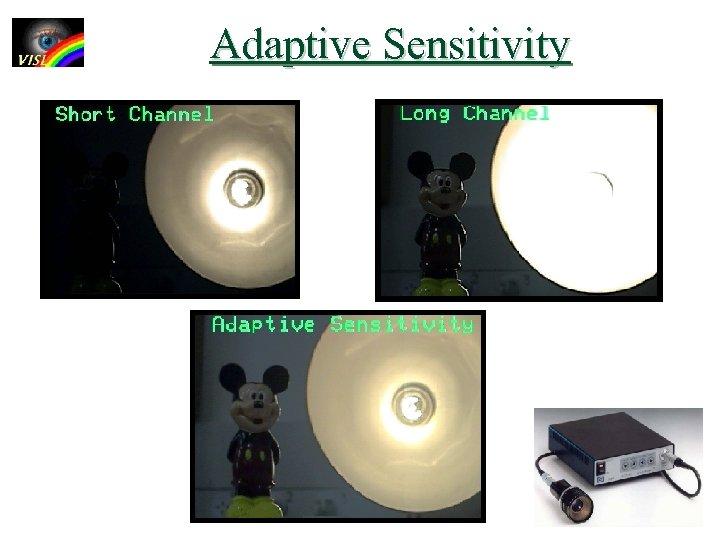 Adaptive Sensitivity