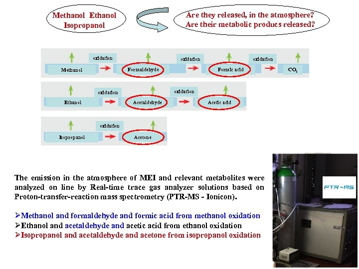 Are they released, in the atmosphere? Are their metabolic producs released? Methanol Ethanol Isopropanol