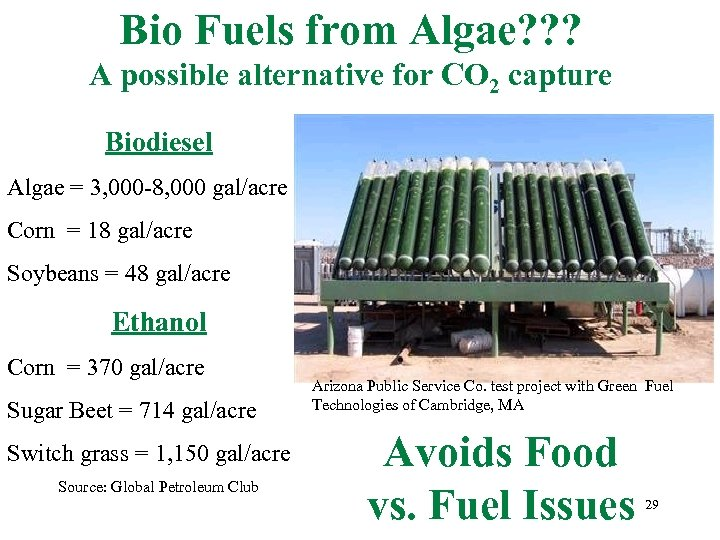 Bio Fuels from Algae? ? ? A possible alternative for CO 2 capture Biodiesel