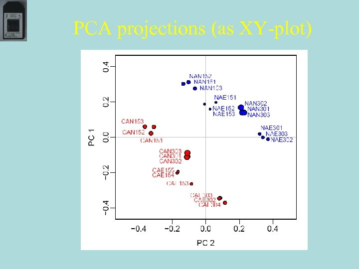 PCA projections (as XY-plot)