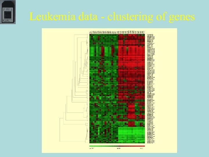Leukemia data - clustering of genes
