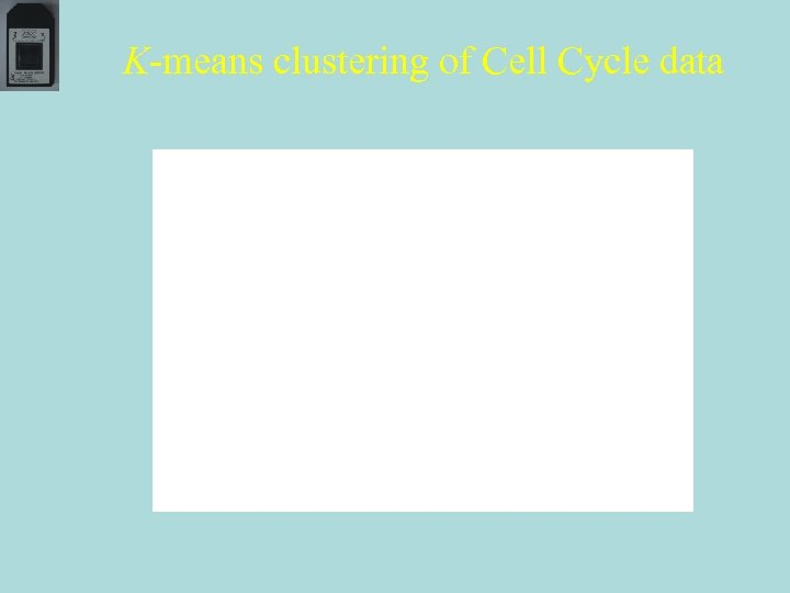 K-means clustering of Cell Cycle data