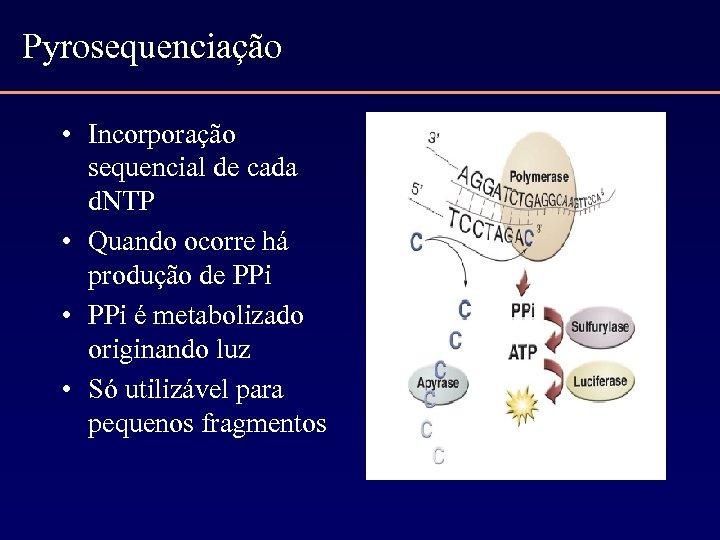 Pyrosequenciação • Incorporação sequencial de cada d. NTP • Quando ocorre há produção de