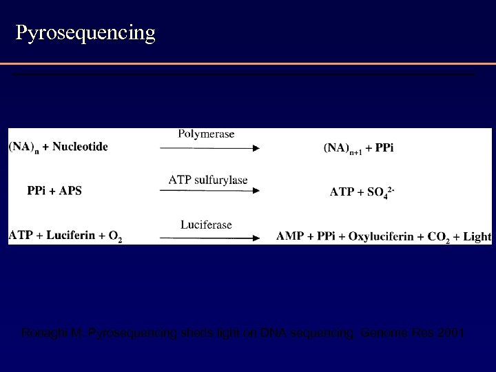 Pyrosequencing Ronaghi M. Pyrosequencing sheds light on DNA sequencing. Genome Res 2001