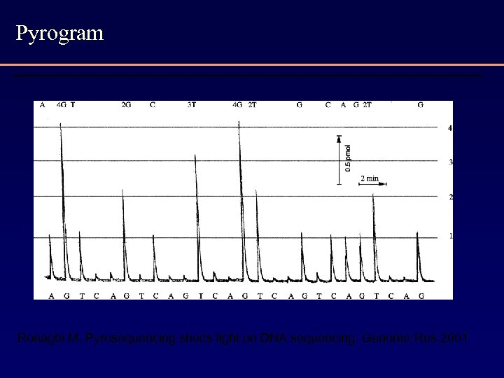 Pyrogram Ronaghi M. Pyrosequencing sheds light on DNA sequencing. Genome Res 2001