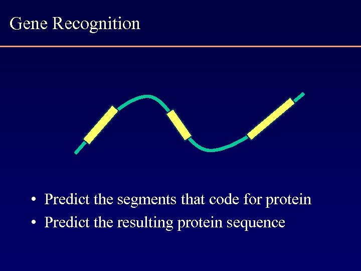 Gene Recognition • Predict the segments that code for protein • Predict the resulting