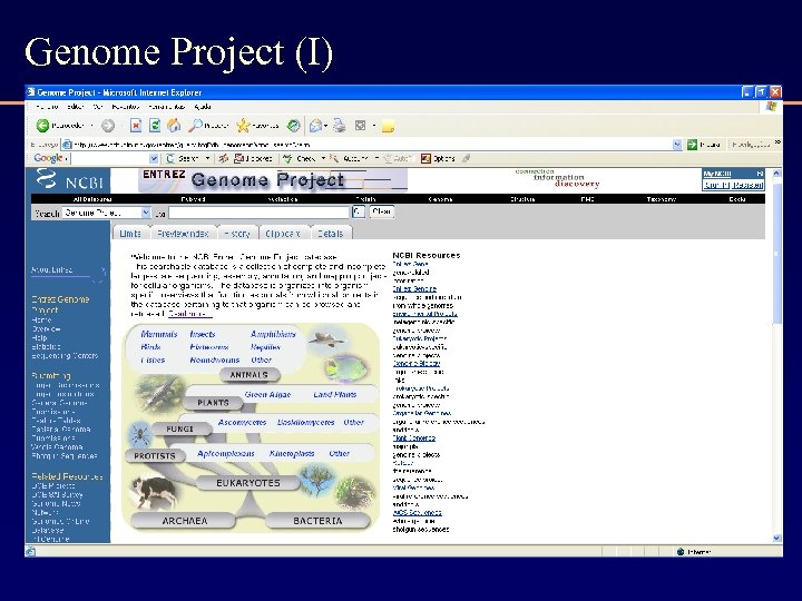 Genome Project (I)
