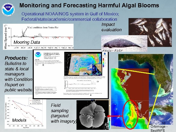 Monitoring and Forecasting Harmful Algal Blooms Operational NOAA/NOS system in Gulf of Mexico; Federal/state/academic/commercial