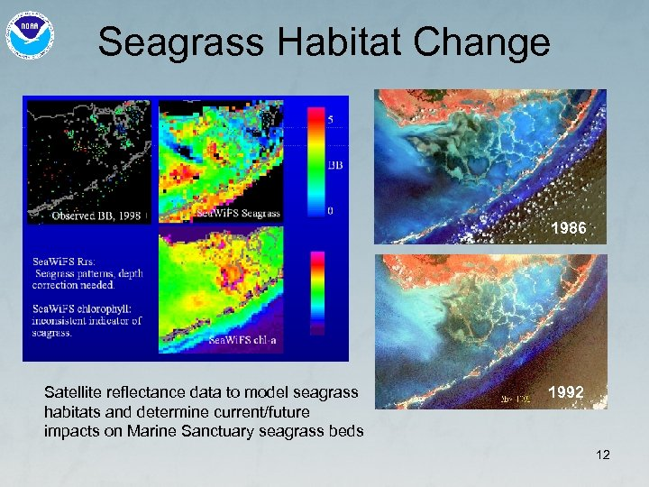 Seagrass Habitat Change 1986 Satellite reflectance data to model seagrass habitats and determine current/future