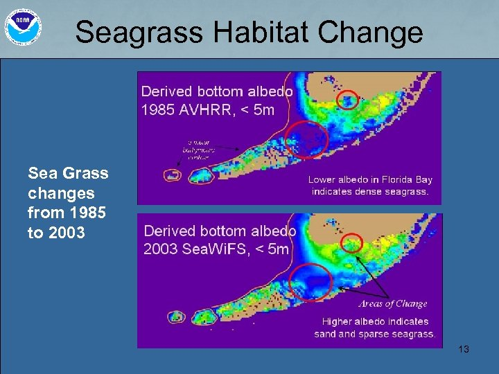 Seagrass Habitat Change Sea Grass changes from 1985 to 2003 13