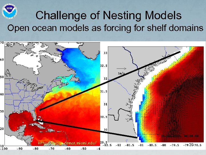 Challenge of Nesting Models Open ocean models as forcing for shelf domains http: //hycom.