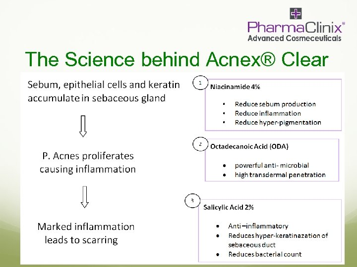 The Science behind Acnex® Clear
