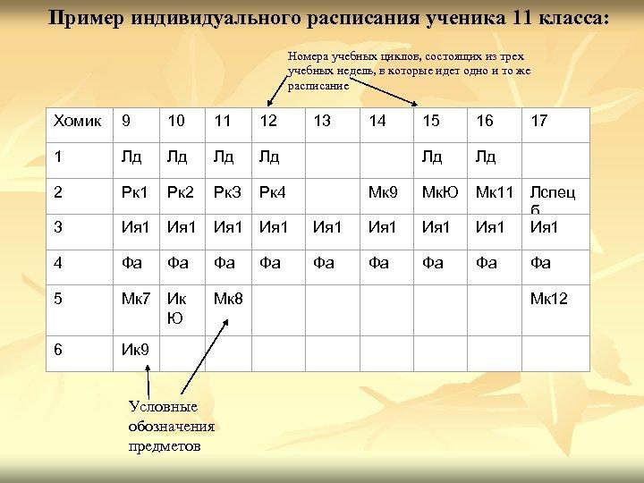 Пример индивидуального расписания ученика 11 класса: Номера учебных циклов, состоящих из трех учебных недель,