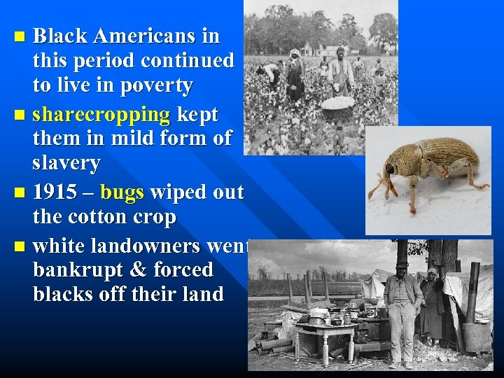 Black Americans in this period continued to live in poverty n sharecropping kept them