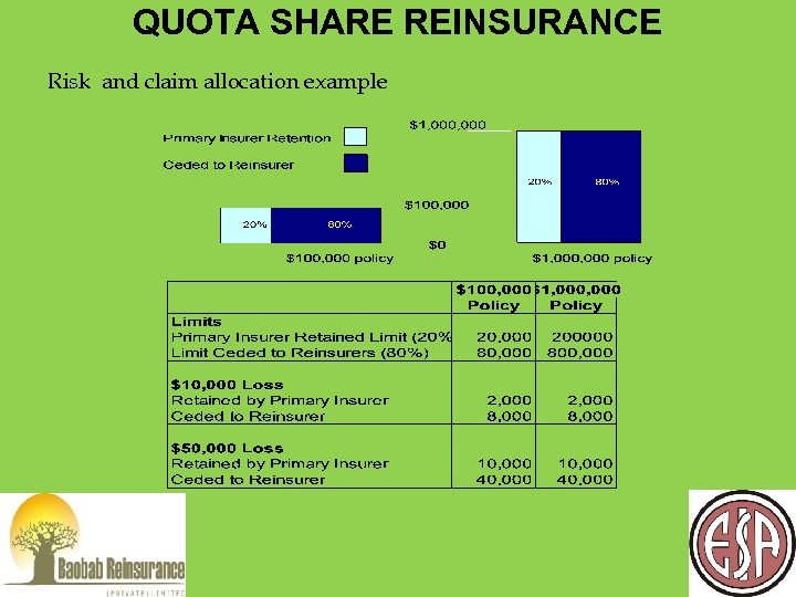 QUOTA SHARE REINSURANCE Risk and claim allocation example