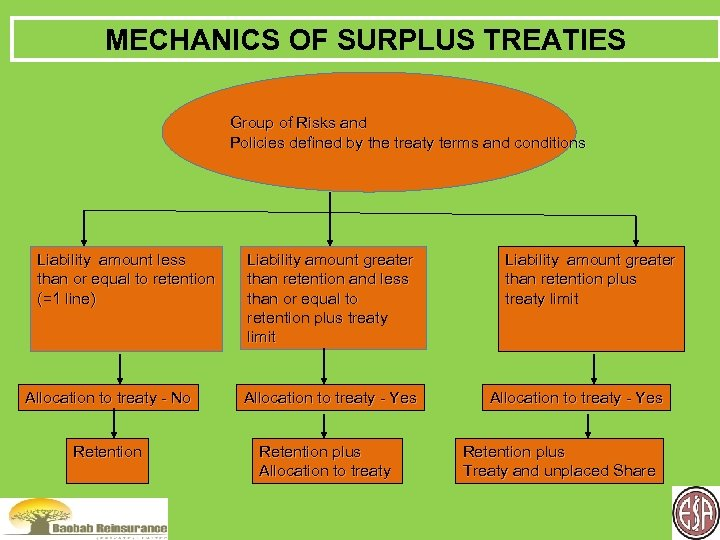MECHANICS OF SURPLUS TREATIES Group of Risks and Policies defined by the treaty terms