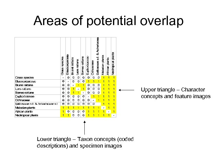 Areas of potential overlap Upper triangle – Character concepts and feature images Lower triangle