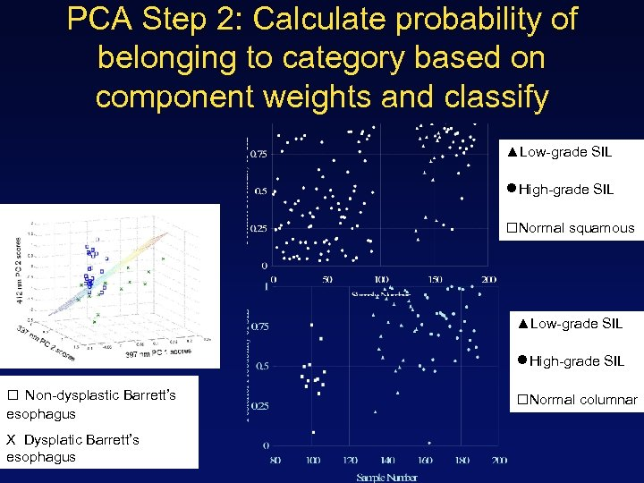 PCA Step 2: Calculate probability of belonging to category based on component weights and
