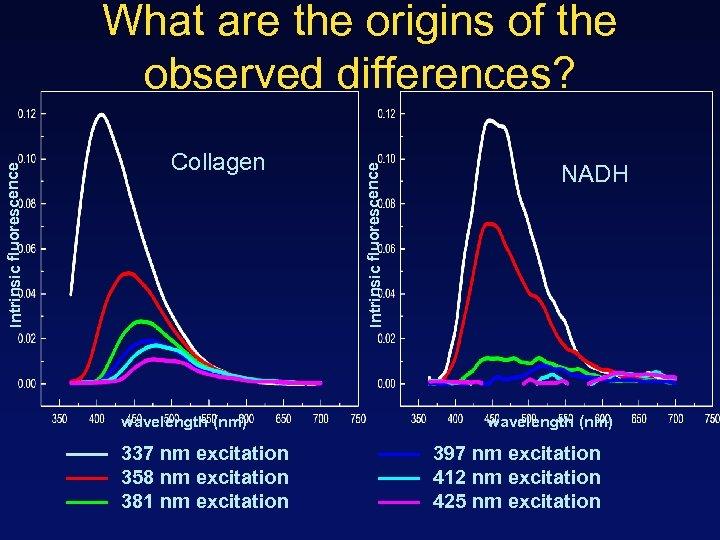 Collagen wavelength (nm) 337 nm excitation 358 nm excitation 381 nm excitation Intrinsic fluorescence