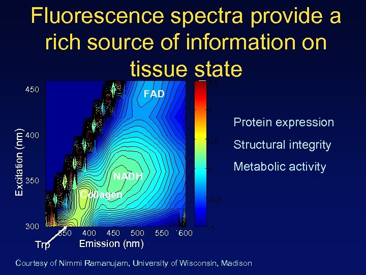 Fluorescence spectra provide a rich source of information on tissue state 1. 5 450