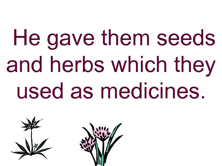He gave them seeds and herbs which they used as medicines.