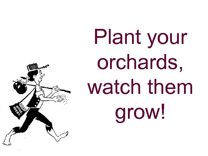 Plant your orchards, watch them grow!