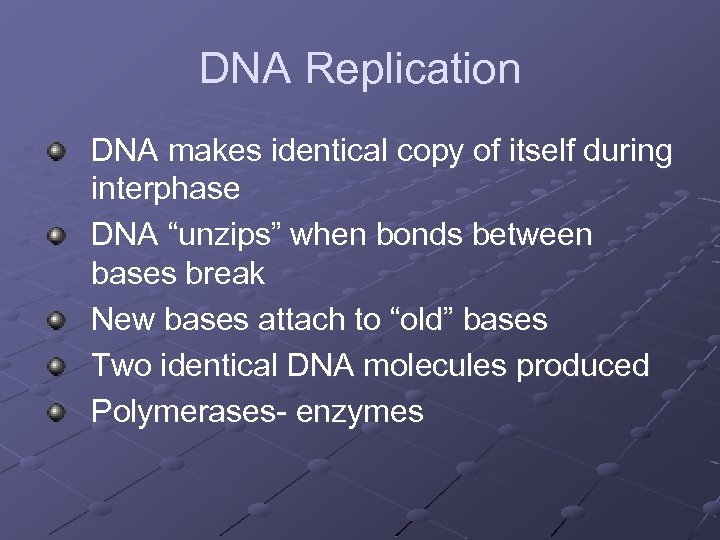 """DNA Replication DNA makes identical copy of itself during interphase DNA """"unzips"""" when bonds"""