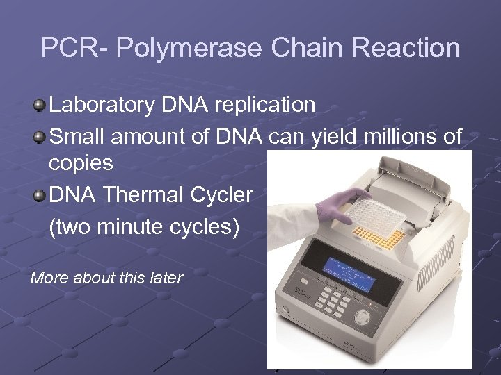 PCR- Polymerase Chain Reaction Laboratory DNA replication Small amount of DNA can yield millions