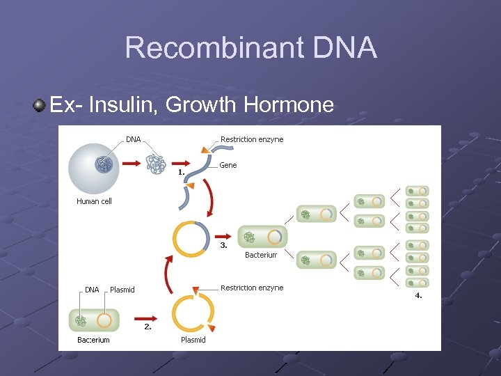 Recombinant DNA Ex- Insulin, Growth Hormone