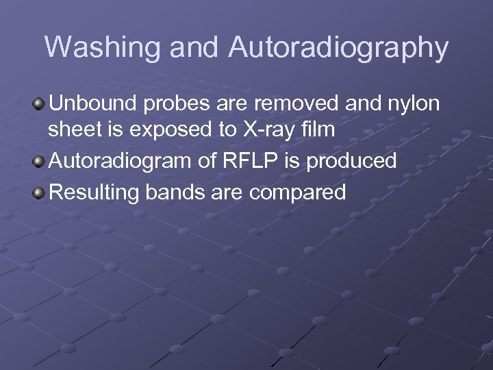 Washing and Autoradiography Unbound probes are removed and nylon sheet is exposed to X-ray