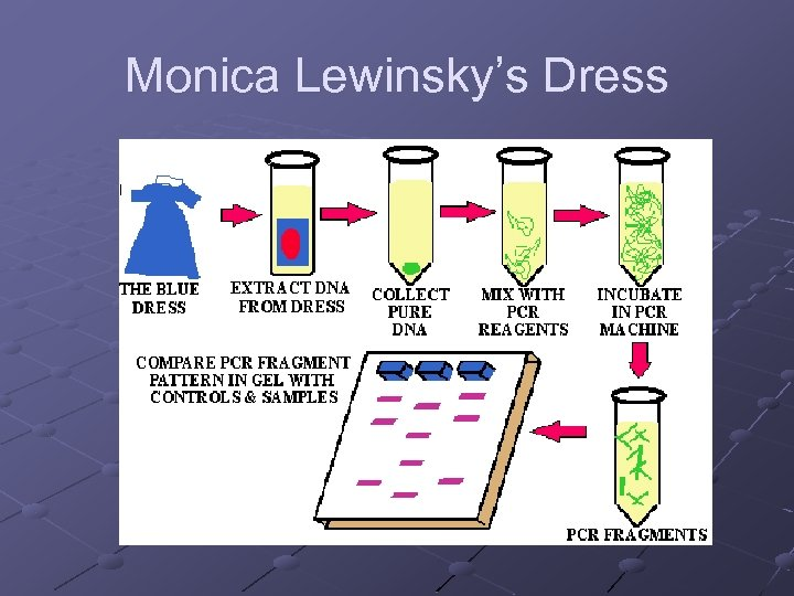 Monica Lewinsky's Dress
