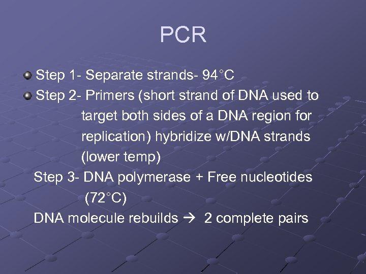 PCR Step 1 - Separate strands- 94°C Step 2 - Primers (short strand of
